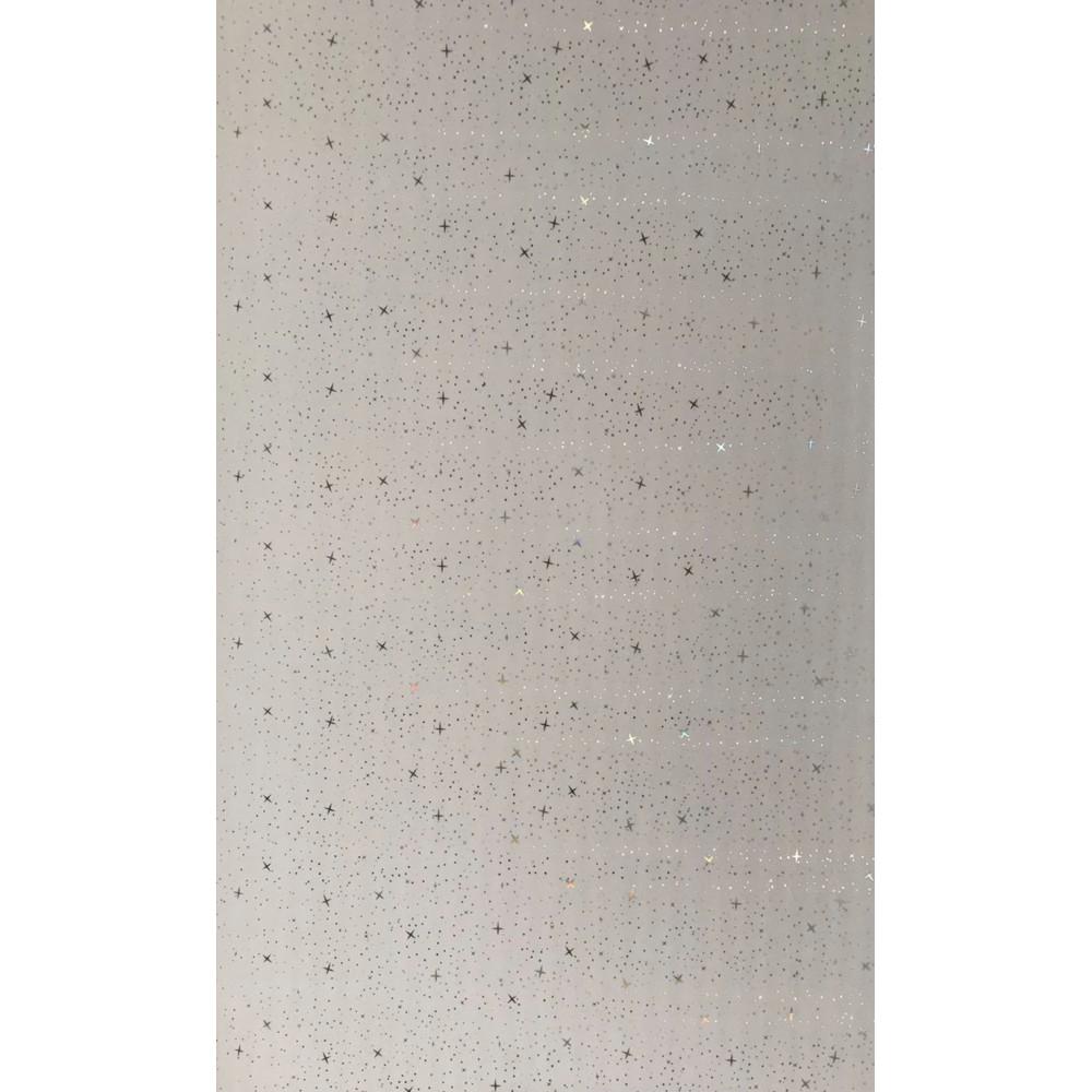 Панель пластикова  ″Panelit″  MILKYWAY (6000*250*8мм)